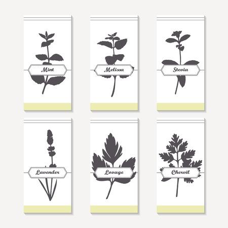 hierba buena: hierbas y especias Colecci�n de las siluetas. Dibujado a mano menta, melisa, la stevia, la lavanda, el apio de monte, perifollo. etiquetas retro para el envasado de alimentos o el dise�o de la cocina. ilustraci�n vectorial