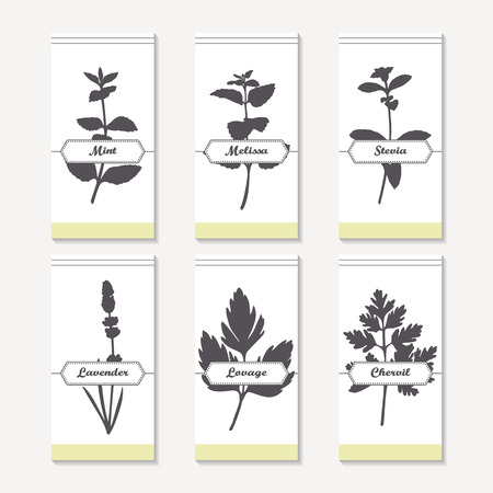 mint leaves: Spicy herbs silhouettes collection. Hand drawn mint, melissa, stevia, lavender, lovage, chervil. Retro labels set for food packaging or kitchen design. Vector illustration