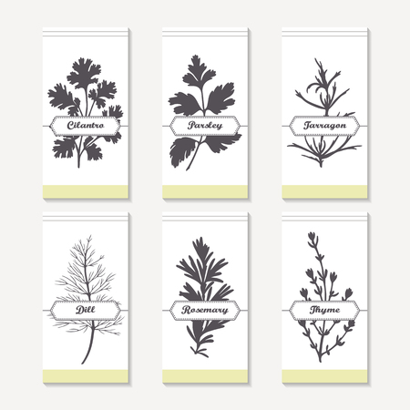 cilantro: Spicy herbs silhouettes collection. Hand drawn cilantro, parsley, tarragon, dill, rosemary, thyme. Retro labels set for food packaging or kitchen design. Vector illustration