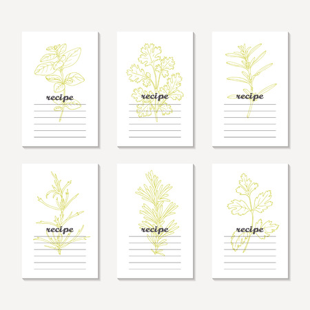 tarragon: Recipe cards collection with hand drawn spicy herbs. Sketched tarragon, cilantro, parsley, rosemary, oregano, savory. Culinary template, kitchen background. Vector illustration Illustration