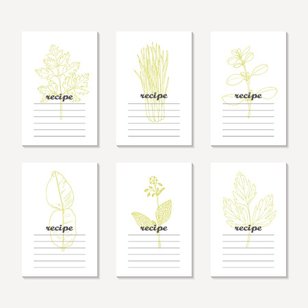 Recipe cards collection with hand drawn spicy herbs. Sketched chervil, lovage, lemongrass, marjoram, kaffir lime, borage. Culinary template, kitchen background. Vector illustration