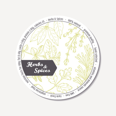 tarragon: Sticker for package design with hand drawn spicy herbs. Label template with place for text. Doodle style condiment. Vector illustration