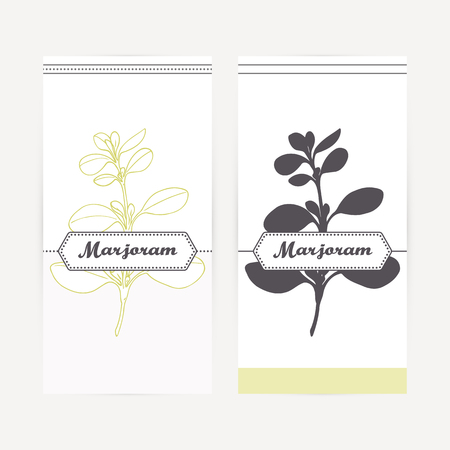 Marjoram seasoning. Hand drawn branch with leaves in outline and silhouette style. Spicy herbs retro labels collection for food packaging or kitchen design. Vector illustration Illustration
