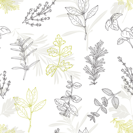 lemon grass: Seamless pattern with hand drawn spicy herbs. Culinary kitchen background with fresh seasoning in sketch stile. Vector illustration