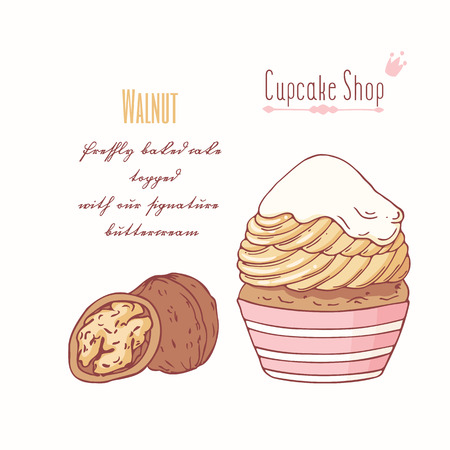 Hand drawn cupcake with doodle buttercream for pastry shop menu. Walnut flavor. Vector illustration Illustration