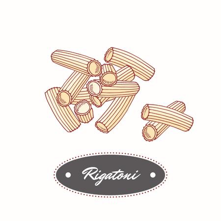手描きパスタ リガトーニは、白で隔離。レストランや食品のパッケージ デザインの要素です。ベクトル図  イラスト・ベクター素材