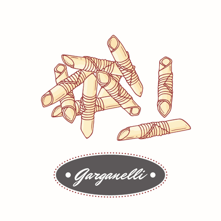 Hand drawn pasta garganelli isolated on white. Element for restaurant or food package design. Vector illustration