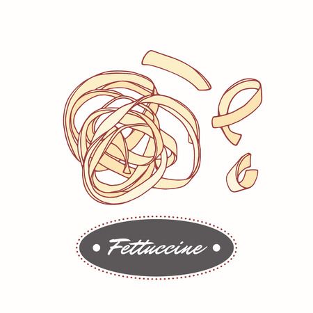 Hand drawn pasta fettuccine isolated on white. Element for restaurant or food package design. Vector illustration