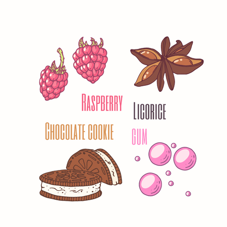 flavor: Set of sweet toppings anise, raspberry, chocolate cookie and bubble gum. Hand drawn food. Vector illustration Illustration