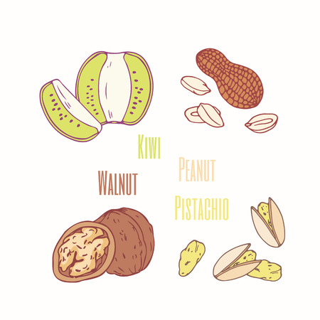 Set of sweet toppings kiwi, peanut, walnut and pistachio. Hand drawn food. Vector illustration
