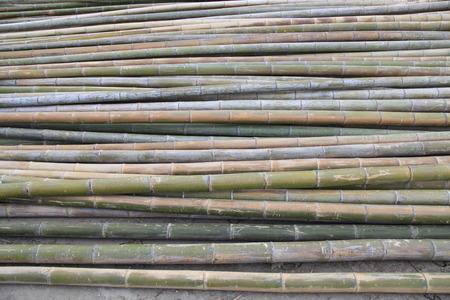 neatly stacked: Neatly stacked the  bamboo pole