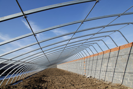 reclamation: Agricultural greenhouses skeleton under the blue sky