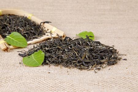 green plant: Tea, close-up Stock Photo