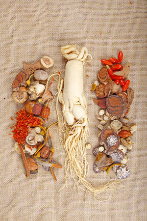 angelica sinensis: Traditional Chinese medicine and ginseng