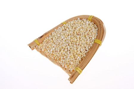 sorgo: arroz sorgo Foto de archivo