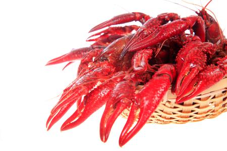 Crawfish on white background Stock Photo - 81476930