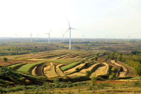 Autumn terraces and wind turbines