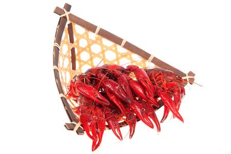 Close up view of crawfish on white background Stock Photo - 84863977