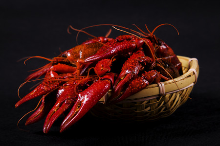 Close up view of crawfish on dark background
