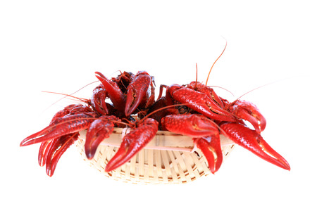 Crawfish on white background close-up view Stock Photo - 90756254