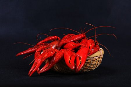 Crawfish on dark background close-up view Stock Photo