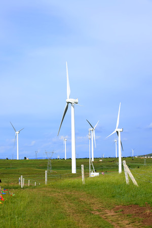 wind turbines on the grassland under the clear sky