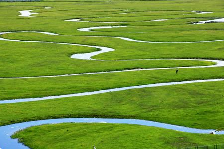 The river on the grassland Stok Fotoğraf
