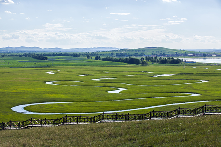 Paisagem, vista, de, um, grassland