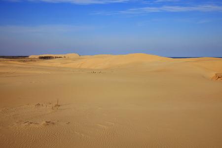 The desert under the blue sky Stock fotó