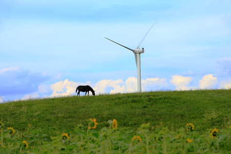 Wind power tower on the grassland
