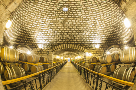 Wine barrels stacked in the cellar of the winery