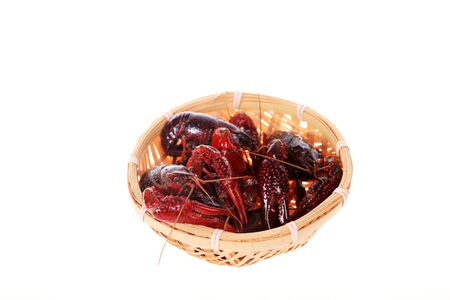 Crayfish,Crawfish isolated on white background