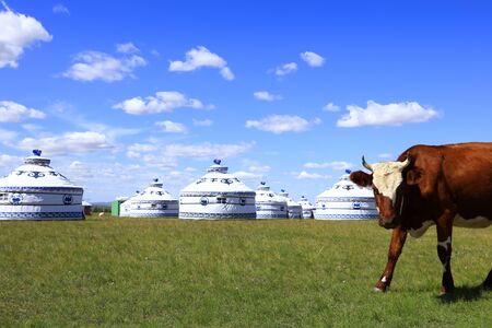 Mongolian yurt on the grassland Stock Photo