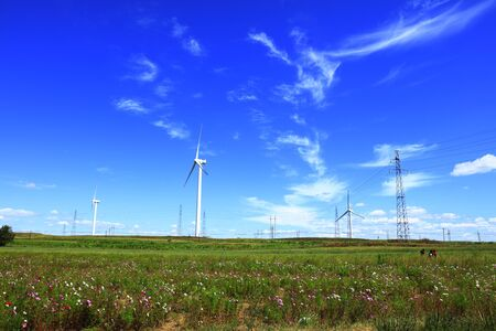Windräder stehen auf dem Grünland Standard-Bild
