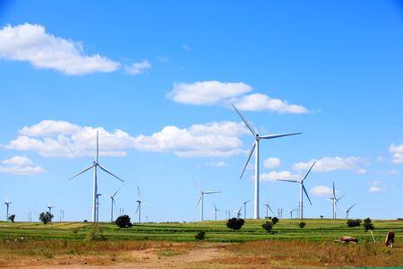 Wind turbines are on the grassland
