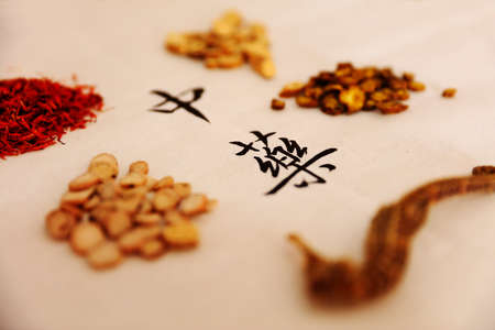 Traditional Chinese medicine, Studio shooting