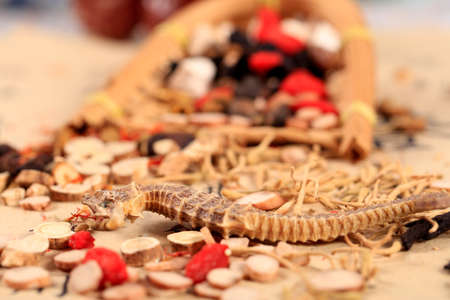 Traditional Chinese medicine, Studio shooting close-up