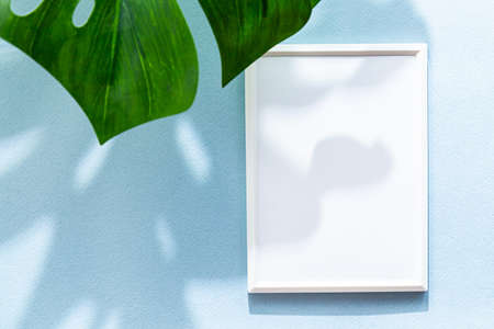 Summer composition, white photo frame, monstera palm leaf and long shadows. Modern stationary flat lay on a light blue background Imagens