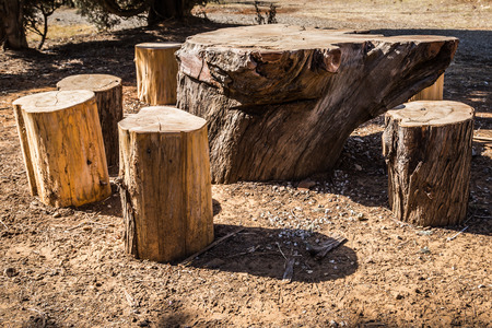 felled: A table and chairs in a picnic area, made out of felled trunks of wood