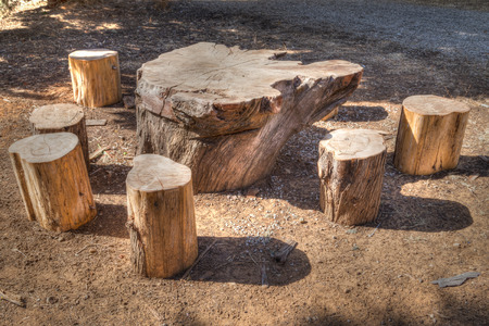 felled: A table and chairs in a picnic area, made out of felled trunks of wood, painterly effect