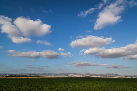 galilee: Cotton field in late afternoon with blue sky, Kibutz-Shomrat, Galilee Stock Photo