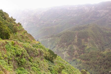 Scenery valley in Spain.Nature landscape.Travel adventures and outdoor lifestyle.Masca valley.Canary island.Scenic mountain landscape.Cactus,vegetation and sunset panorama in Tenerife