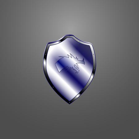 phantasy: Vector image of a metallic shield with a dragon.