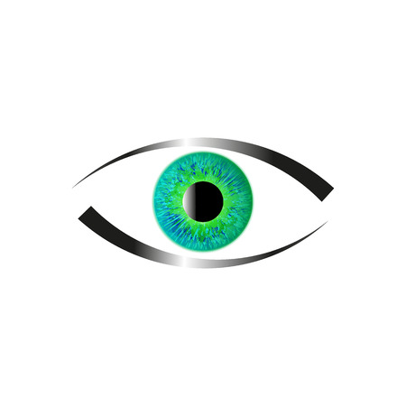 green eye: Green Eye on White Background.