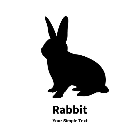 Vector illustration of a black rabbit isolated on white background. Çizim