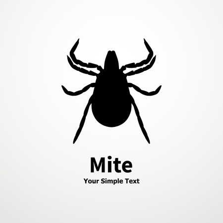 acarid: Vector illustration of a black tick on a white background. Mite, acarus, acarid. Illustration