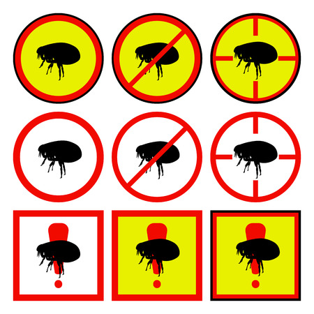 eradication: Vector illustration of yellow, red icons with flea.