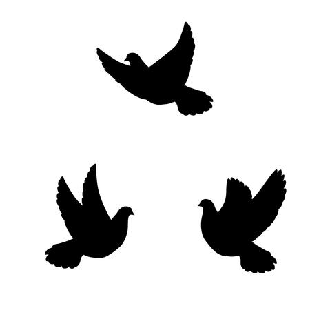 illustrazione vettoriale di una silhouette isolato della colomba uccello su uno sfondo bianco. Piccioni di volo.