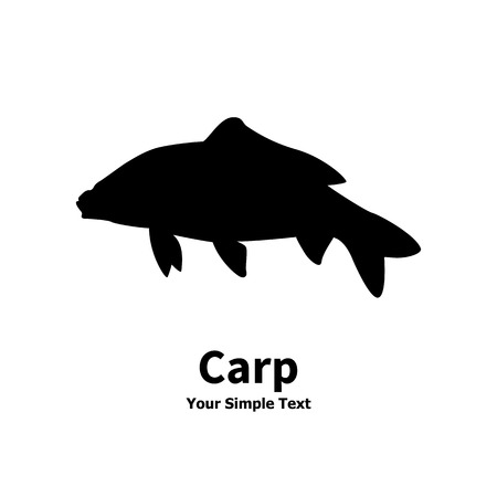 fish form: illustration of a isolated silhouette of carp fish on white background.