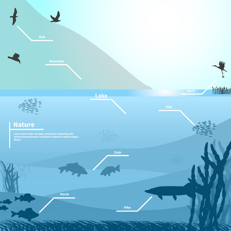 mere: illustration of nature on a blue background. Lake or river near the mountain. Birds and fish living in the lake. Underwater life. Infographics lake.